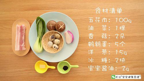 宝宝最喜欢吃的辅食——宝宝卤肉饭 又快又好