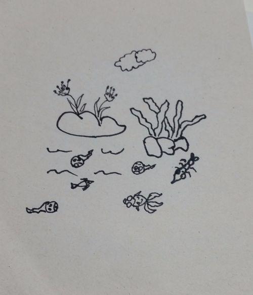 美丽的小池塘简笔画画