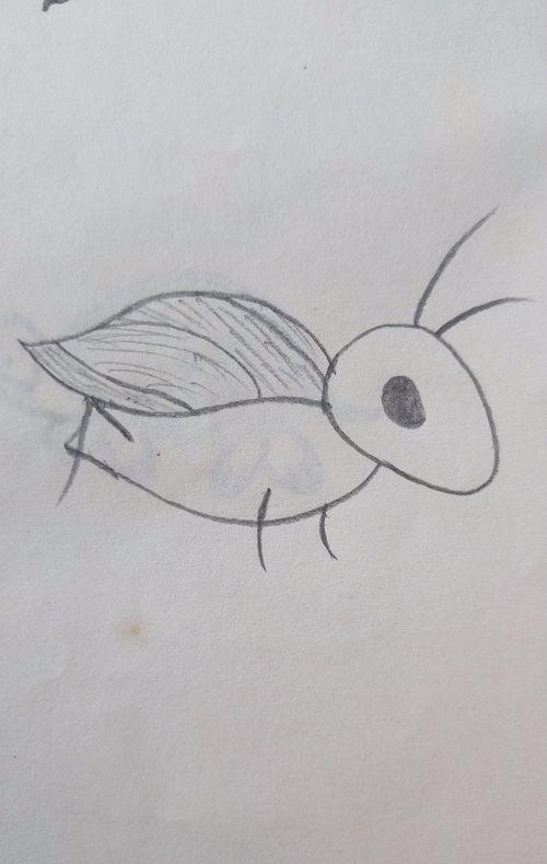 动漫小蟋蟀怎么画,又