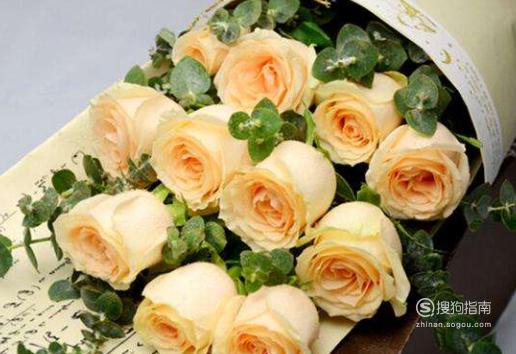 不同颜色的玫瑰代表什么含义呢