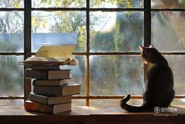 快速阅读技巧