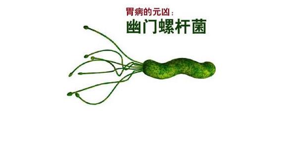 幽门螺杆菌阳性有哪些症状 值得收藏