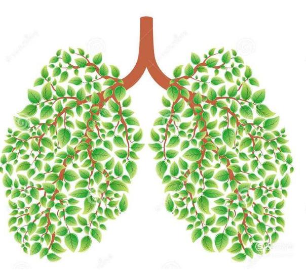 戒烟后各阶段的身体反应