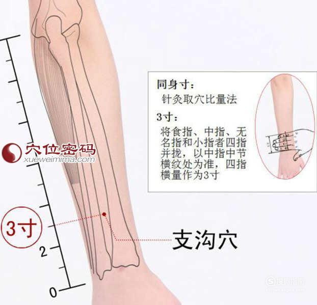 支沟穴位位置图及作用,这几步你要了解