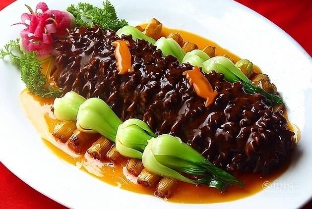 海参怎么吃最有营养 你值得一看的技巧
