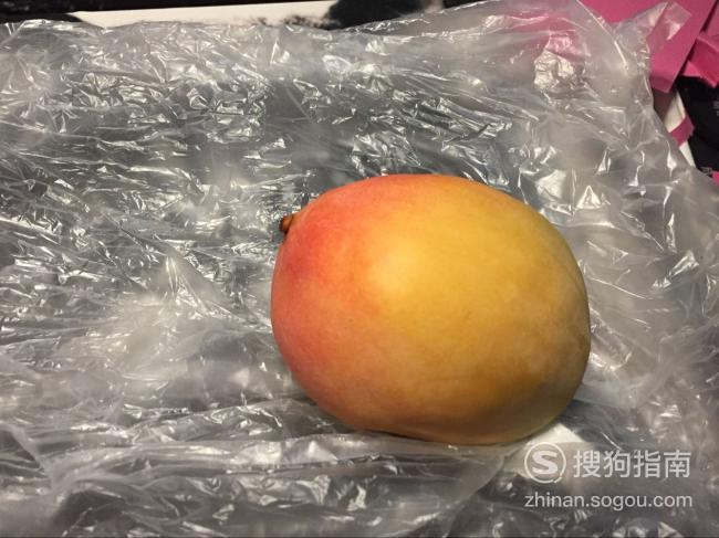 芒果核如何种盆栽 值得一看