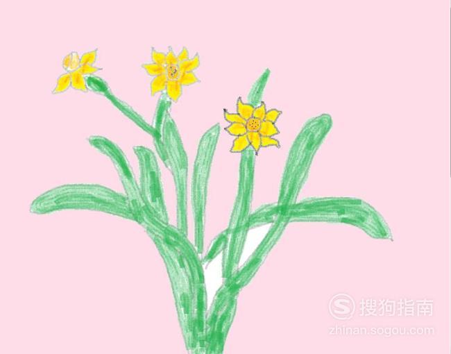 如何用彩色铅笔画水仙花 涨知识了