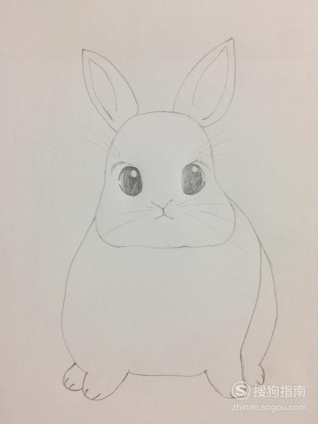 简笔画之萌萌的小兔子,看完你就知道了