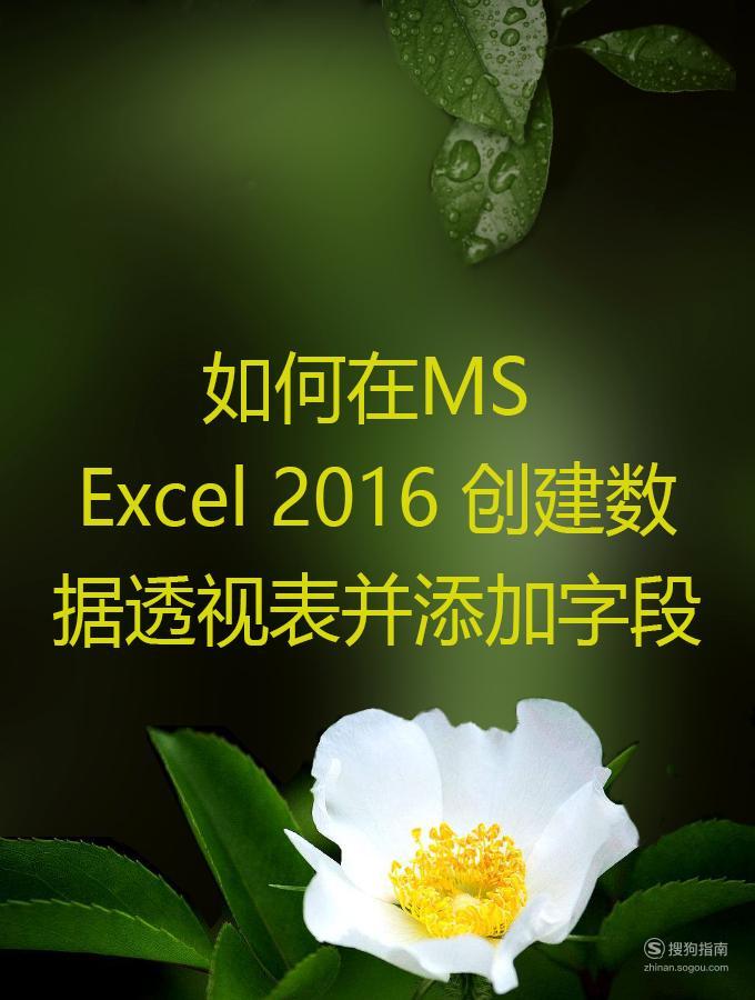 如何在MS Excel 2016 创建数据透视表并添加字段 原来是这样的