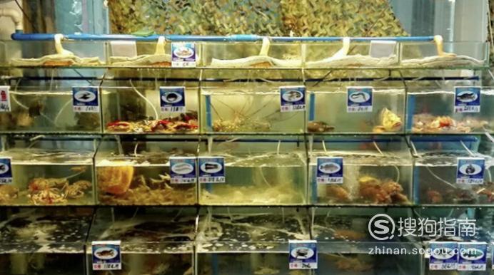 怎样开个鲜活海鲜店,看完就明白了