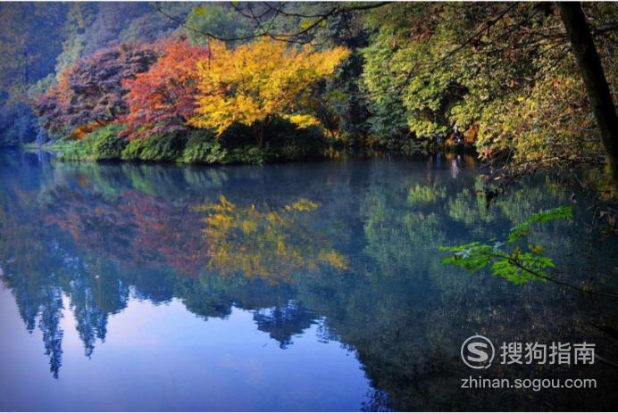 杭州旅游自由行攻略,看完就明白了