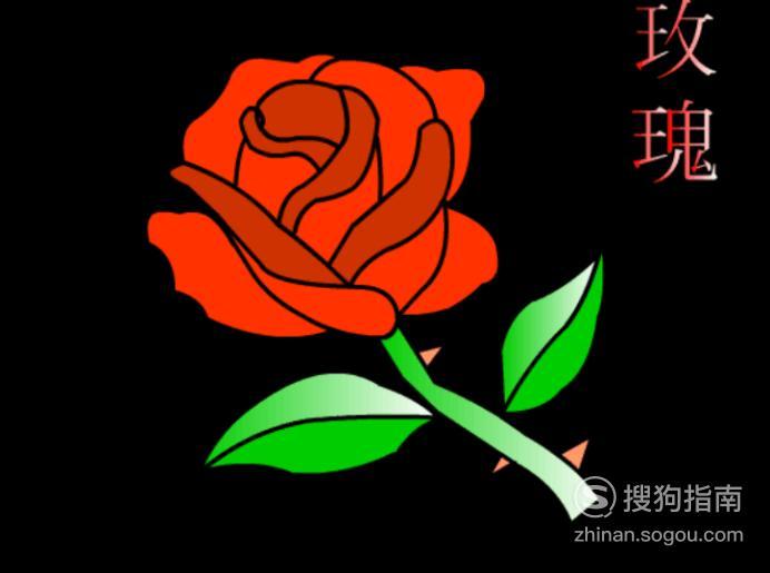 简笔画:如何使用Flash绘制玫瑰花,你值得一看的技巧