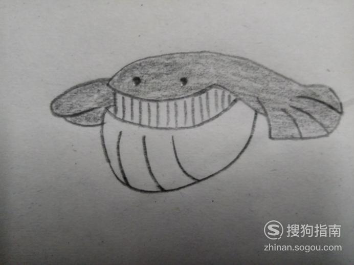 简笔画《宠物小精灵》之吼吼鲸,这几步你要了解