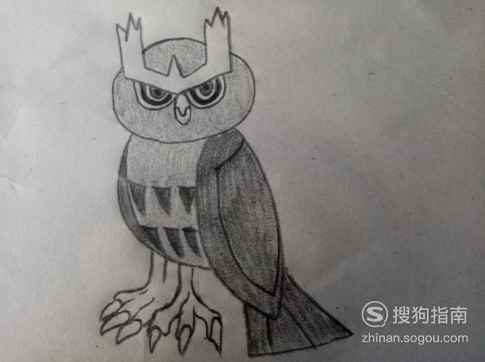 简笔画《宠物小精灵》之猫头夜鹰 划重点了