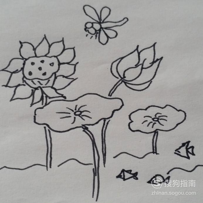 蜻蜓戏荷塘幼儿简笔画
