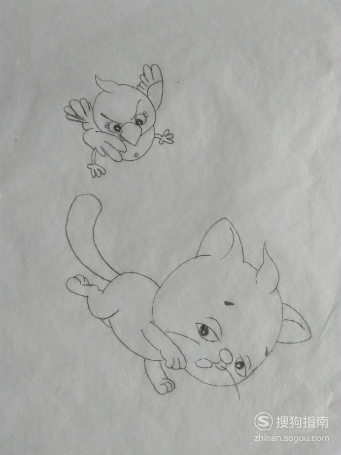 简笔画鸟啄猫的画法 专家详解