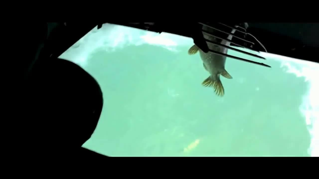 """用活鱼当诱饵用草耙叉鱼,这""""冰钓""""玩的可真够另类"""