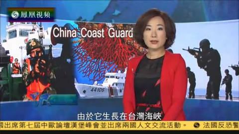 红珊瑚案背后的中国海警力量