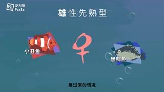 可以改变性别的神奇海洋生物