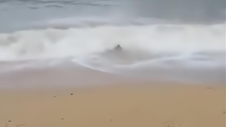 哥们,你这是得罪了大海吗?差点就被冲走了!