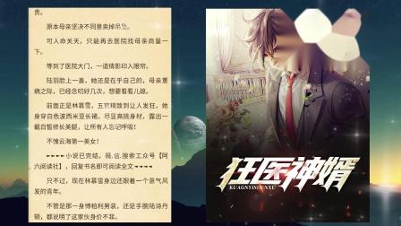 陆羽林慕雪的小说,下载小说狂医神婿