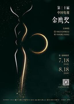 第三十届中国电视金鹰奖剧照