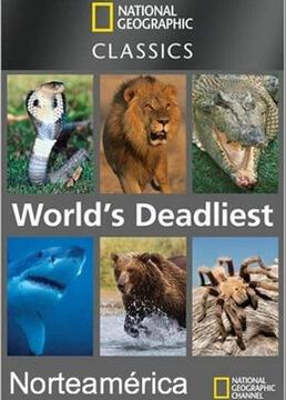 动物杀手第一季剧照