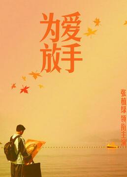 为爱放手2011剧照