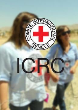 红十字国际微纪录2016剧照