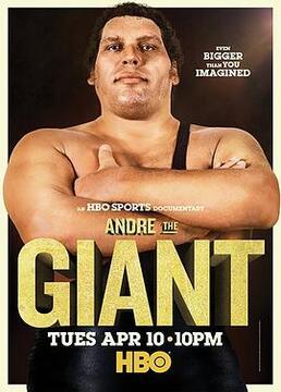 巨人安德雷剧照
