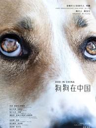 狗狗在中国剧照