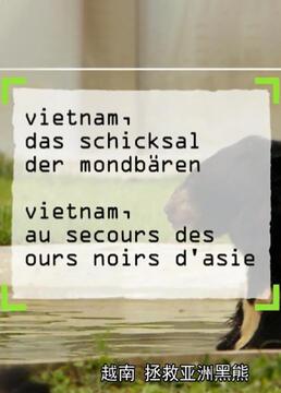 越南拯救亚洲黑熊剧照