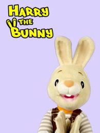 和兔子哈利学单词和数字剧照