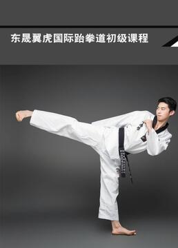 东晟翼虎国际跆拳道初级课程剧照