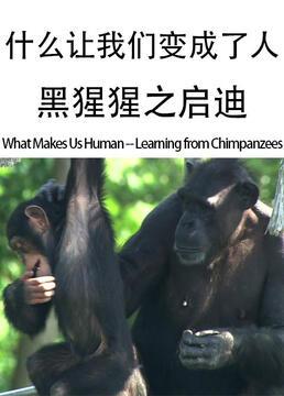 什么让我们变成了人黑猩猩之启迪剧照