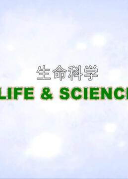 生命科学系列第一季剧照