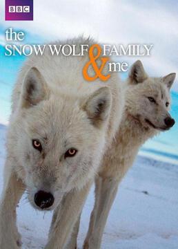 雪狼家庭和我剧照
