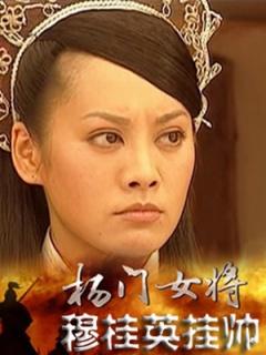 杨门女将穆桂英挂帅剧照
