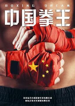 中国拳王剧照