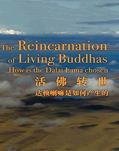活佛转世——达赖喇嘛是如何产生的剧照