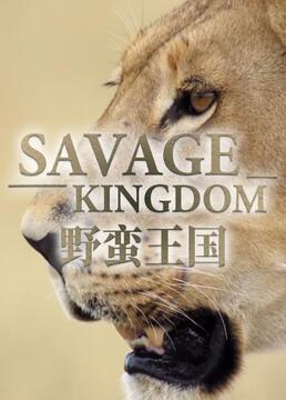 野蛮王国剧照