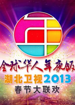 湖北卫视全球华人年夜饭春节联欢晚会2013剧照