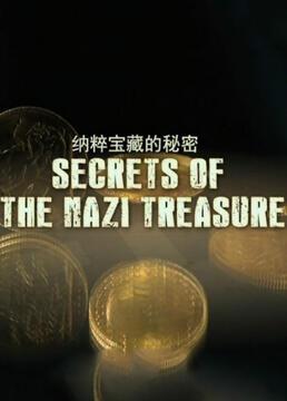 纳粹宝藏的秘密剧照