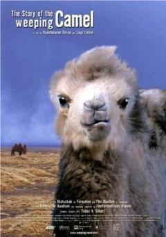 哭泣的骆驼剧照
