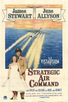 战略空军剧照