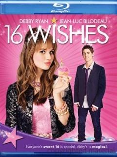 十六个愿望