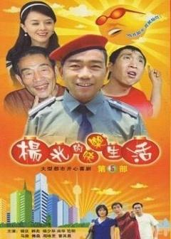杨光的快乐生活第五部剧照