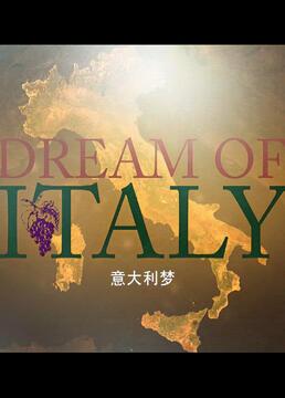 意大利梦剧照