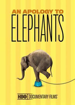 抱歉啊大象剧照
