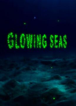 发光的海洋剧照
